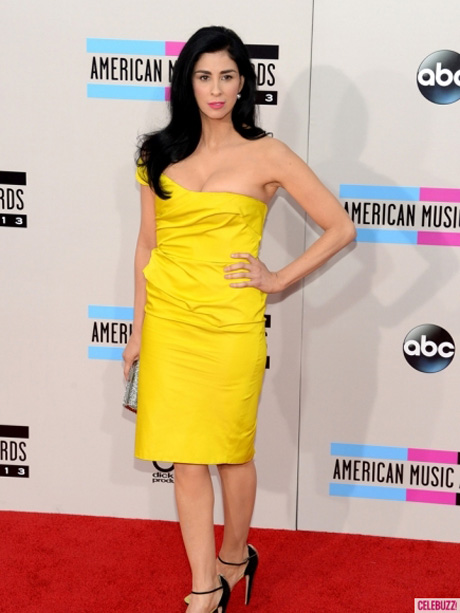 American-Music-Awards-2013-Los-Angeles-CA-Best-Worst-Dressed-11242013-09-435x580