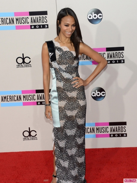 American-Music-Awards-2013-Los-Angeles-CA-Best-Worst-Dressed-11242013-11-435x580