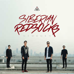 "SIBERIAN REDSOCKS // SINGLE RELEASE ""THE NEXT BEST THING"""