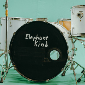 "ELEPHANT KIND // SINGLE ""PLEASER"""