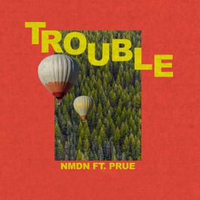 """NMDN FT PRUE. // SINGLE """"TROUBLE"""""""