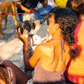 DOG GROCER CAFE // USAHA KOLEKTIF PECINTA ANJING DI BALI