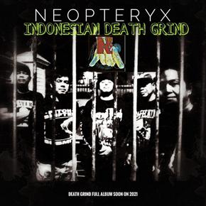 """NEOPTERYX // RILIS MUSIK VIDEO """"SAVE WILDLIFE"""""""