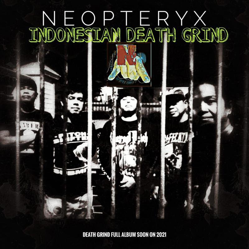 neopteryx-body