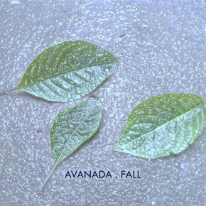 "AVANADA // EP ""FALL"""